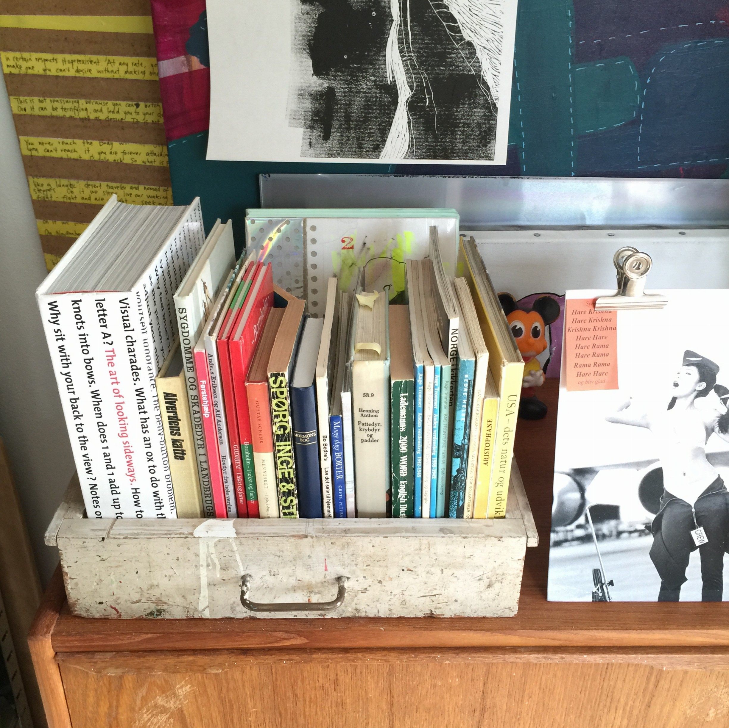 old-drawer-book-shelf-sandra-jouatte